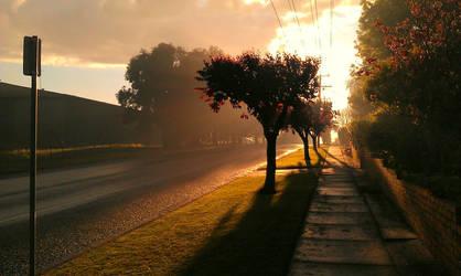 Sunset by onemillionbluebirds
