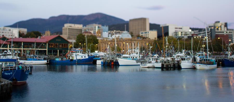Evolving Picture » World  |Constitution Dock Hobart