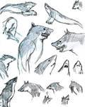 Carcharadon Sketches by Jarahamee