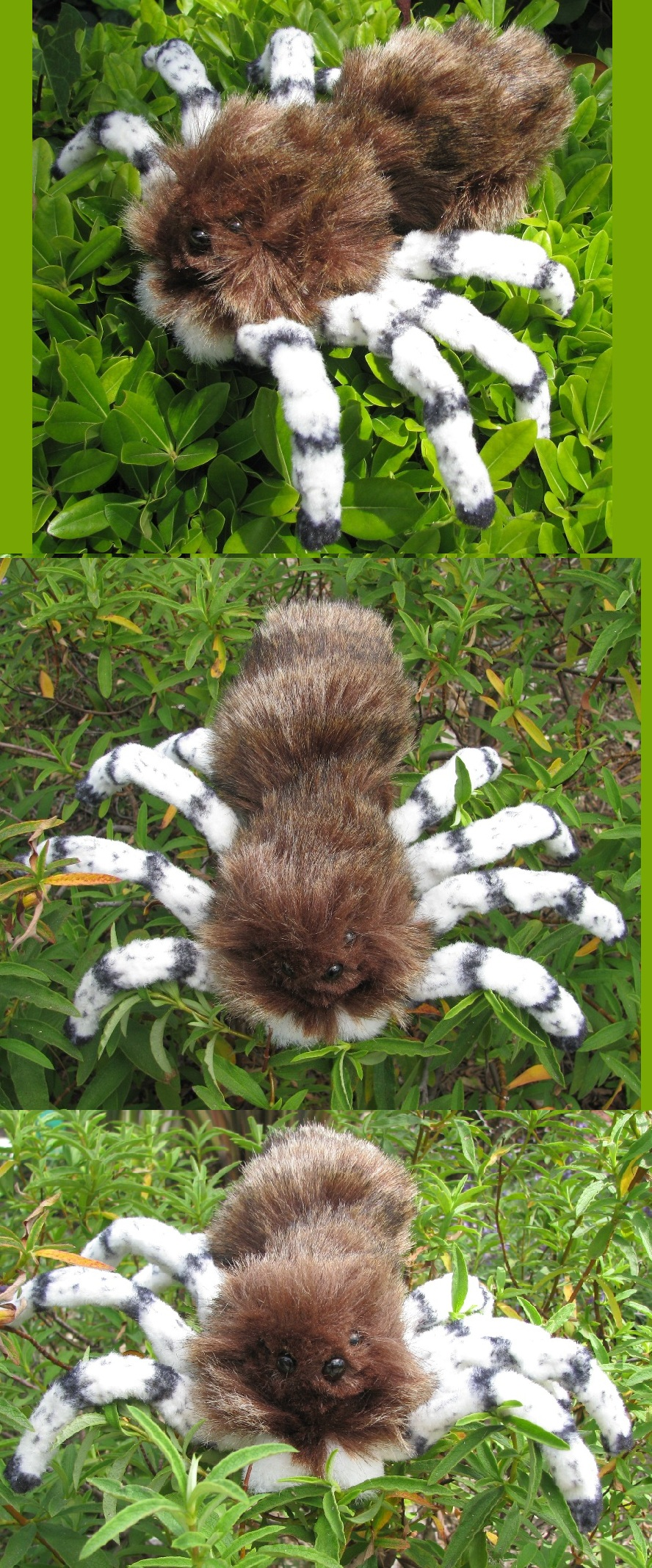 Jumping Spider Plush Toy by Jarahamee on DeviantArt
