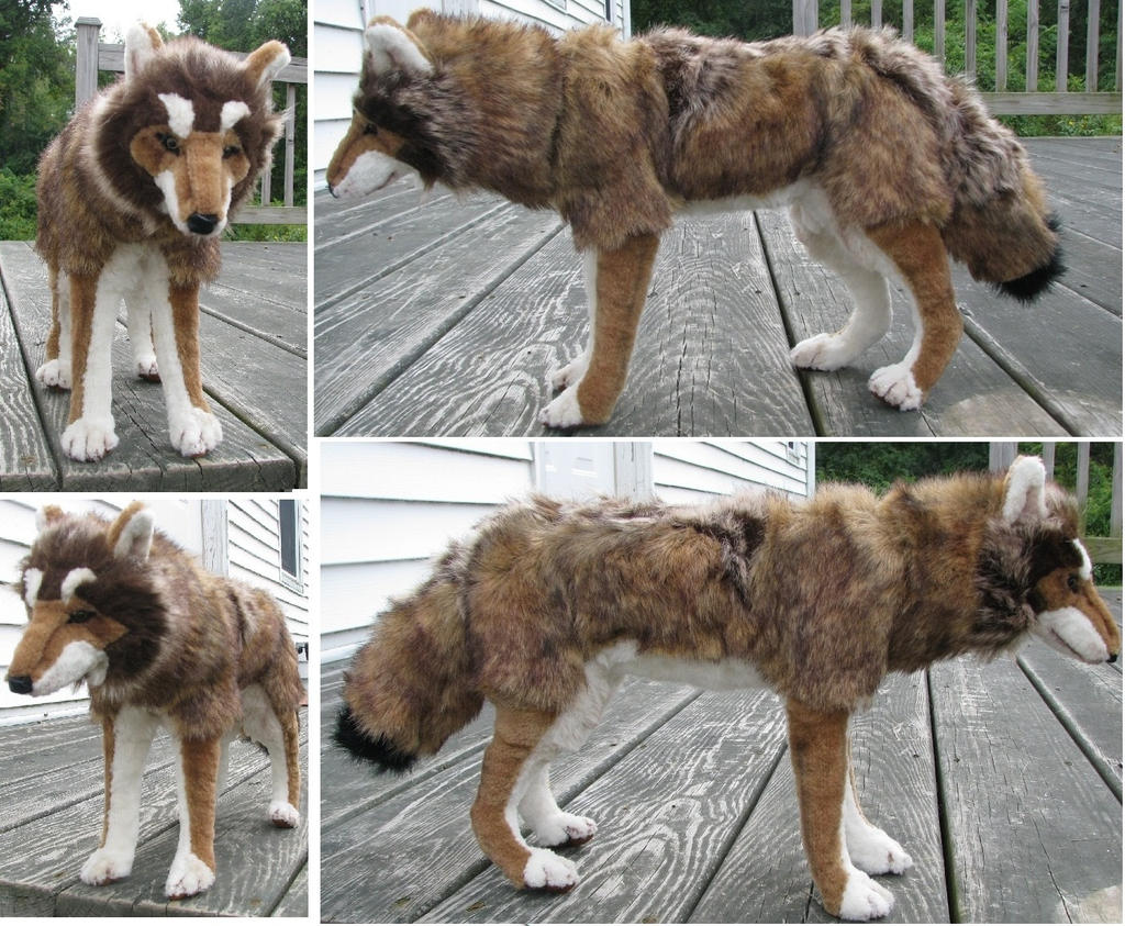Can You Make A Coat From A Dog Pelt