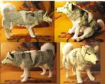 Desmond Siberian Husky Plush Commission