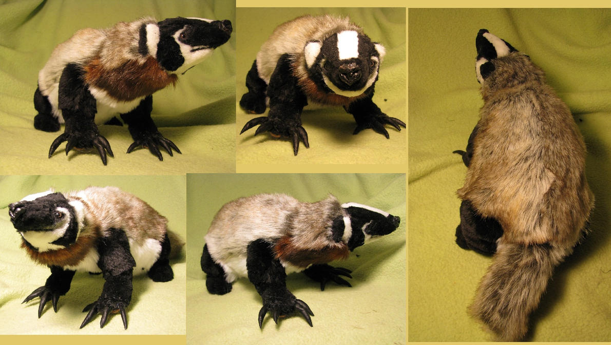 American Badger Plush Toy By Jarahamee On Deviantart