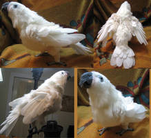Charity the Goffin's Cockatoo Plush Toy by Jarahamee