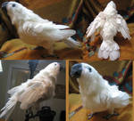Charity the Goffin's Cockatoo Plush Toy