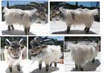 Male Icelandic Goat Plush Toy