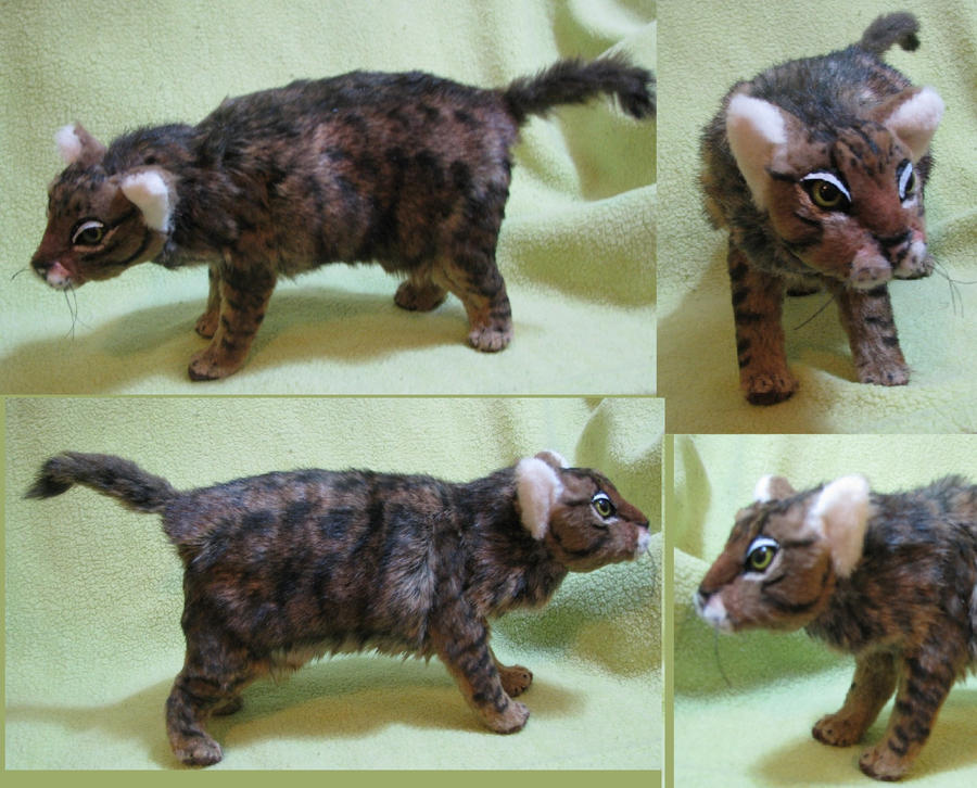 Snap Plushy Tabby Cat Tf By Donpretzel On Deviantart Photos On Pinterest