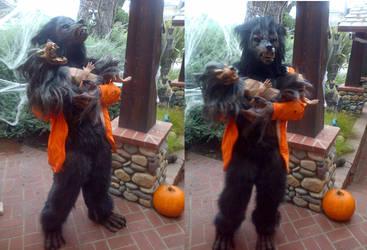 Werewolf Costume Upgrades by Jarahamee