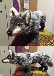 Graying Black Wolf 3 by Jarahamee