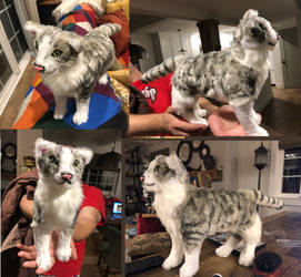 Realistic Cat Plush Commission
