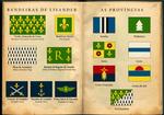 Bandeiras de Lisander / Flags of Lisander (1 of 3)