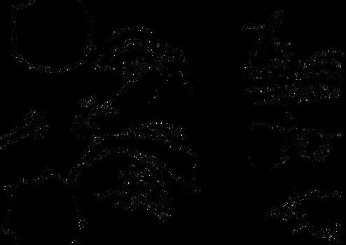 Luffy vs Smoker(Tashigi) lineart