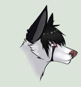 Koira0099's Profile Picture
