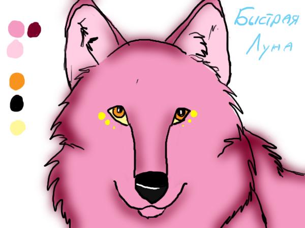 http://fc05.deviantart.net/fs71/f/2010/334/e/7/quick_lune_by_howling_wolfy-d33x1cr.jpg