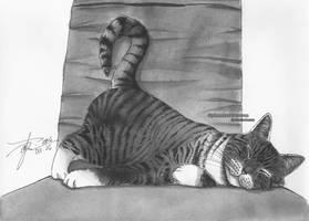 Inktober Day 25: Catnap