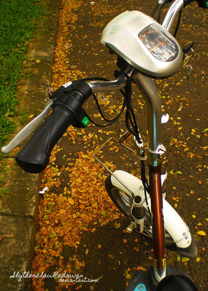Sunday Bicycle Ride by SlytherclawPadawan