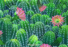 March Watercolor 14: Exotic Plant