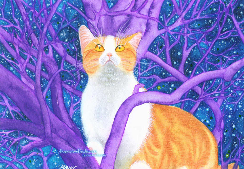 Mystery Kitty #3: Innocent Vision (Lighter v.1) by SlytherclawPadawan
