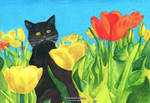 Cozy Kitty #2: A Sunny Spring (Real Colors)