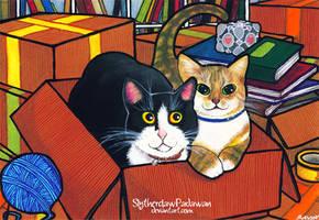 Mega Cat Commission Project #01