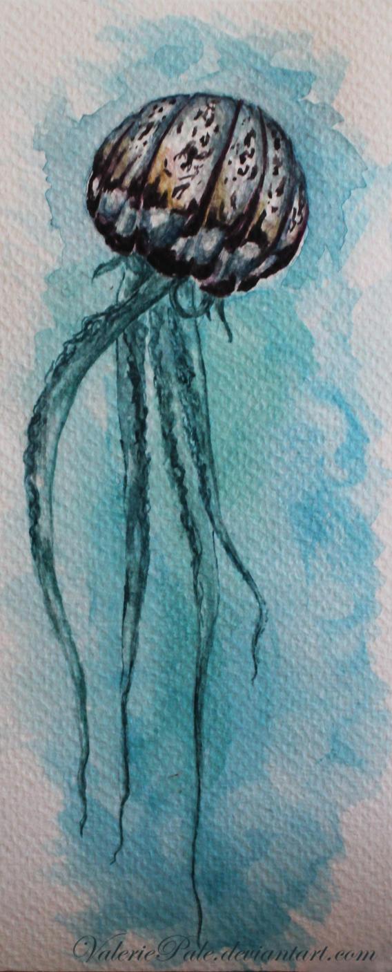 Jellyfish by ValeriePale