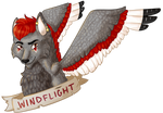 GDCAT: windflight!
