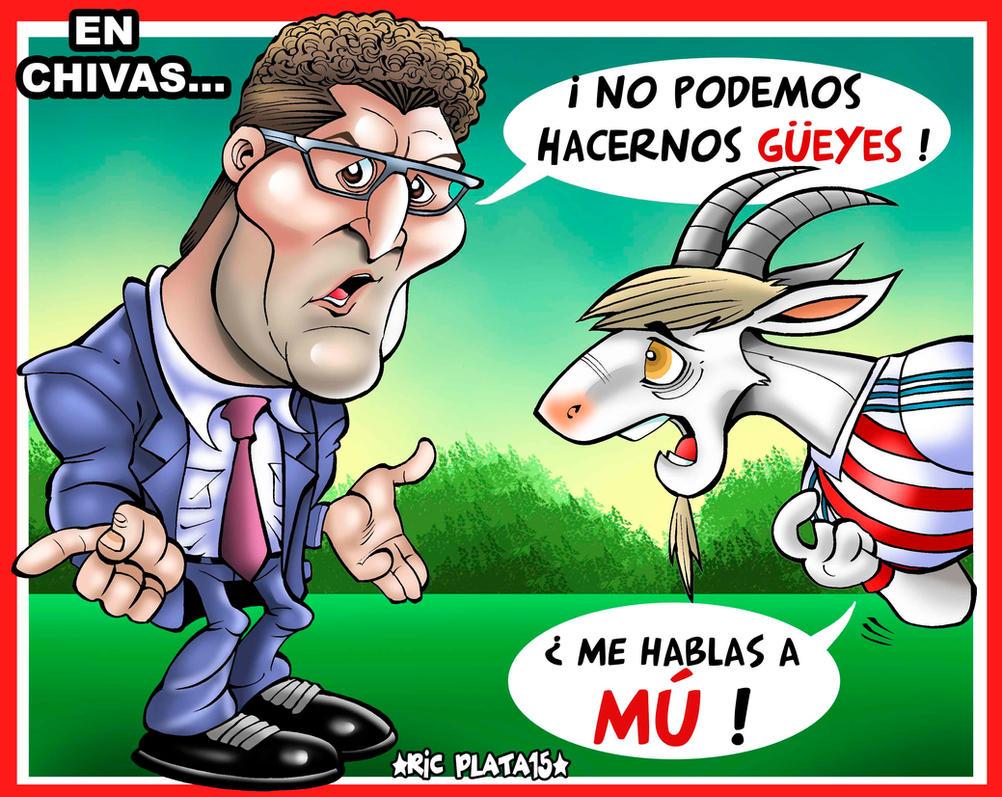 CHIVAS  Y GUEYES by ricplata