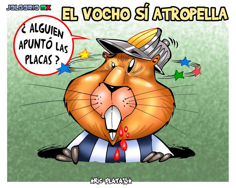 ATROPELLADO by ricplata