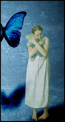 Why I'm Afraid of Butterflies by Ashenden