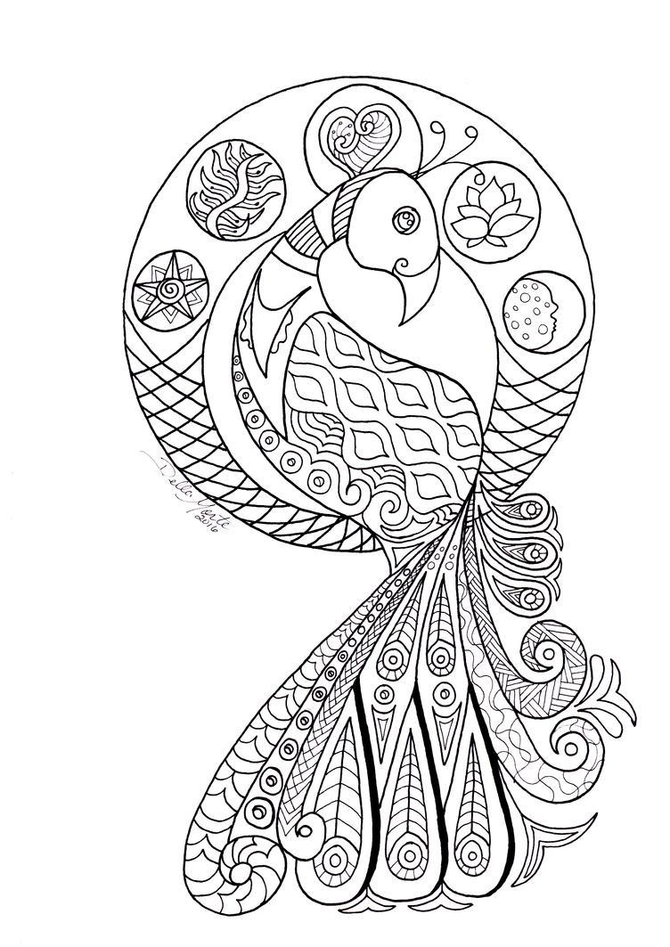 Peacock Coloring Page by Doubtful-Della