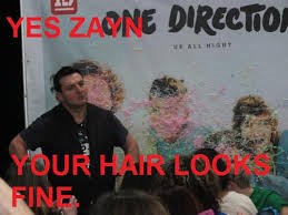 Zayn your hair will be 100% perfect. by Magalor
