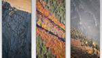 Autumn triptych