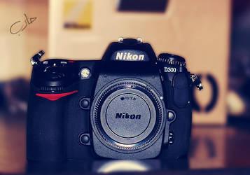 Nikon D300 by DaDooDa