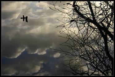 The Sky Below by rissdemeanour