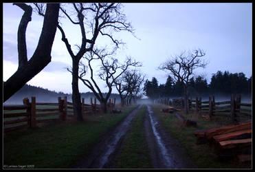 Shadowed Path by rissdemeanour