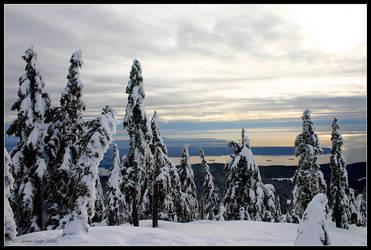 Snowy Vista by rissdemeanour