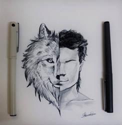 Twilight Saga by Abhir4m