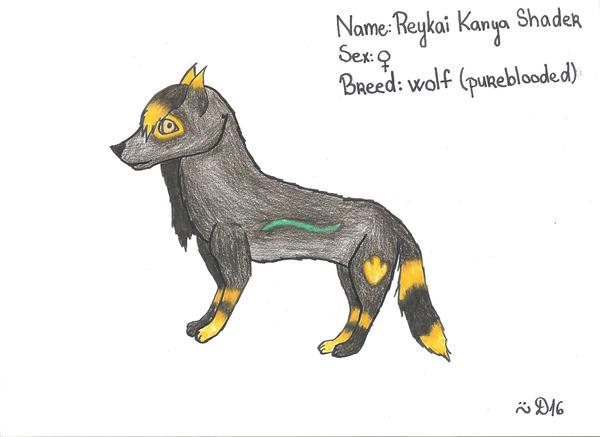 Reykai Kanya Shader