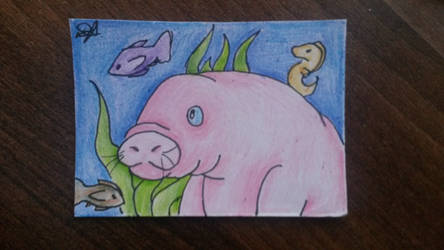 [ACEO] Sea cow