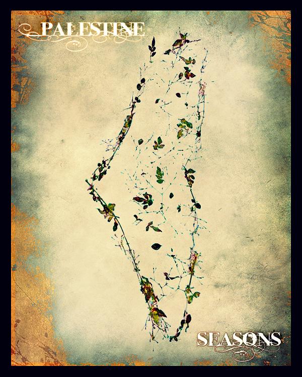 Palestine Seasons by Quadraro