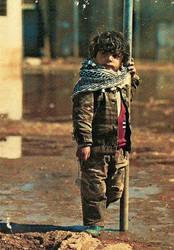 Son of Palestine by Quadraro