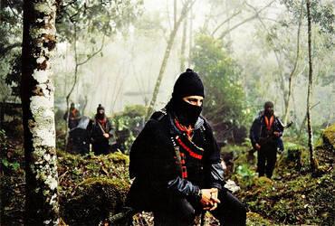 Subcomandante  Marcos and the EZLN by Quadraro