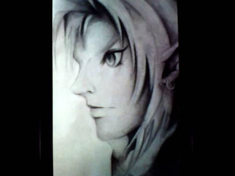 Link (From Legend of Zelda)
