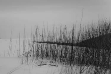 sad and beautiful world  III by wronislawa