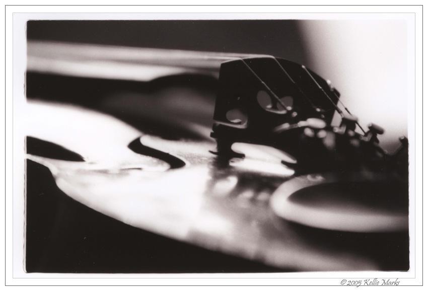 violin by kowari