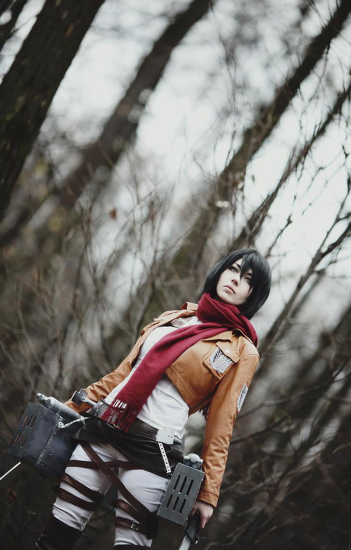Shingeki no Kyojin by Millenia666