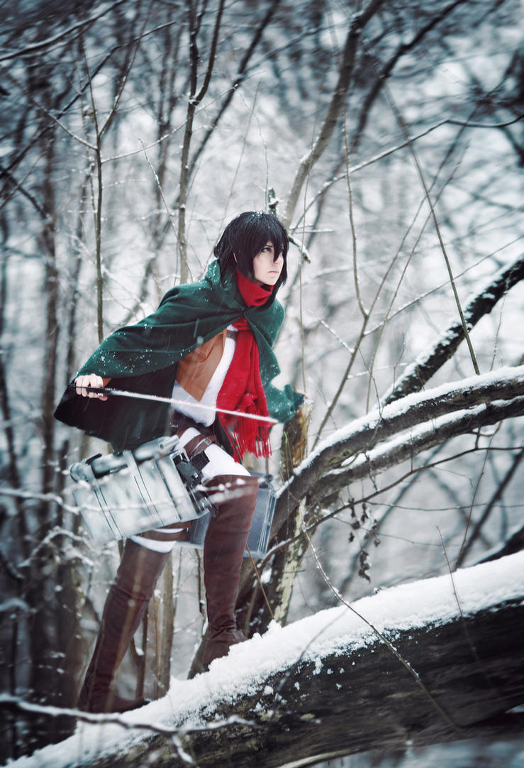 Mikasa by Millenia666