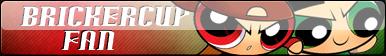 Brickercup Fan Button