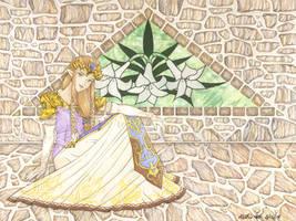 Princess Zelda: Twilight Princess