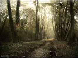 Lonely road to Home by WojciechDziadosz